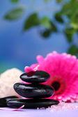 Spa stenen en mooie gerbera op houten tafel — Stockfoto