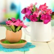 Flowers growing from egg shell, on bright background — Stock Photo