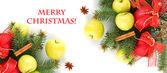Beyaz izole güzel Noel kompozisyon — Stok fotoğraf