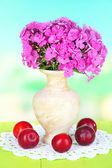 красивый букет флоксов в вазе на столе на светлом фоне — Стоковое фото