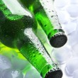 Stock Photo: Bottles of beer with ice cubes, close up