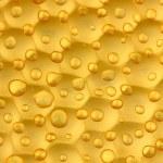 Texture honeycombs close-up background — Stock Photo