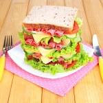 Huge sandwich — Stock Photo
