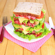 Huge sandwich — Stock Photo #29306675