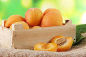 Apricots in drawer on bagging on wooden table on nature background — Stock Photo