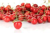 Cherry berries close up — Stock Photo