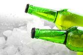 бутылок пива с кубиками льда, крупным планом — Стоковое фото