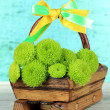Beautiful green chrysanthemum in wooden basket on table on blue background — Stock Photo