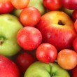 Juicy fruits background — Stock Photo #29314015