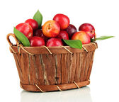 Ripe plums in basket isolated on white — Stock Photo
