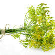 Fresh dill flowers, isolated on white — Stock Photo #29405265