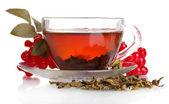 Siyah çay ile cam fincan beyaz izole kırmızı kartopu çiçeği — Stok fotoğraf