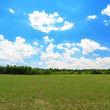 Beautiful field — Stock Photo #29455941