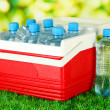 Picnic refrigerator with bottles of water and ice cubes on grass — Stock Photo