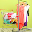Shopping cart with clothing, on color wall background — Stock Photo #29523927