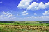 Beautiful landscape of green meadow, and blue sky — Stock Photo