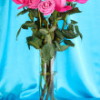 Stock Photo: Beautiful pink roses in vase on blue fabric background