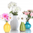 Beautiful flowers in vases isolated on white — Stock Photo #29531711
