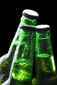 Bottles of beer on black background — 图库照片