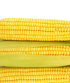 Crude corns isolated on white — Stock Photo