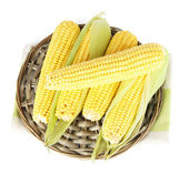 Crude corns on wicker tray isolated on white — Stock Photo