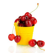 Ripe red cherry berries in pail isolated on white — Stock Photo