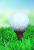 Golf ball on green grass outdoor close up — Stock Photo