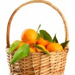Ripe sweet tangerine with leaves in basket, isolated on white — Stock Photo #29620291