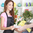 Beautiful girl florist with flowers in flowers shop — Photo