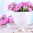Many small pink cloves in cup on wooden table on window background — Stock Photo #29626583