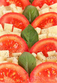 Cheese mozzarella with vegetables in the plate close-up — Stock Photo