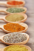 Assortment of spices in wooden spoons on wooden background — Foto Stock
