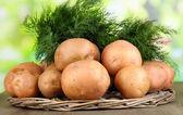 картофель и укроп плетеные деревянный поднос на столе на фоне природы — Стоковое фото