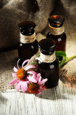 Medicine bottles with purple echinacea flowers on wooden table with burlap — Stock Photo