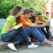 Happy group of young students sitting in park — Stock Photo #29859281