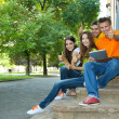 Happy group of young students sitting in park — Stock Photo #29859295