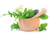 Fresh herbs in mortar, isolated on white — Stock Photo