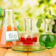 Conceptual photo of bio fuel. On bright background — Stock Photo #29860033