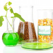 Stock Photo: Conceptual photo of bio fuel. Isolated on white