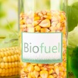 Conceptual photo of bio fuel. On bright background — Stock Photo #29860109