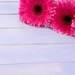 gerbera rosa lindas flores na mesa de madeira roxa — Fotografia Stock  #29861041