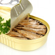 Open tin can with sardines, isolated on white — Stock Photo #29861481