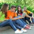 Happy group of young students sitting in park — Stock Photo #29906479