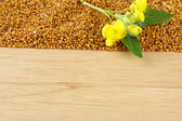 Mustard seeds and mustard flower on wooden background — Stock Photo