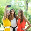 Stock Photo: Three beautiful young woman taking picture in summer park