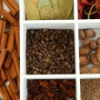 Assortment of aroma spices in white wooden box close up — Stock Photo #29998161