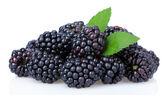Sweet blackberries isolate on white — Stock Photo