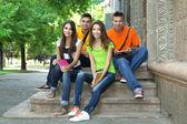 Joyeux groupe de jeunes étudiants assis dans le parc — Photo