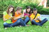 Feliz grupo de jovens estudantes sentados no prado — Fotografia Stock