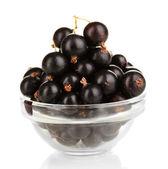 Fresh black currant isolated on white — Stock Photo